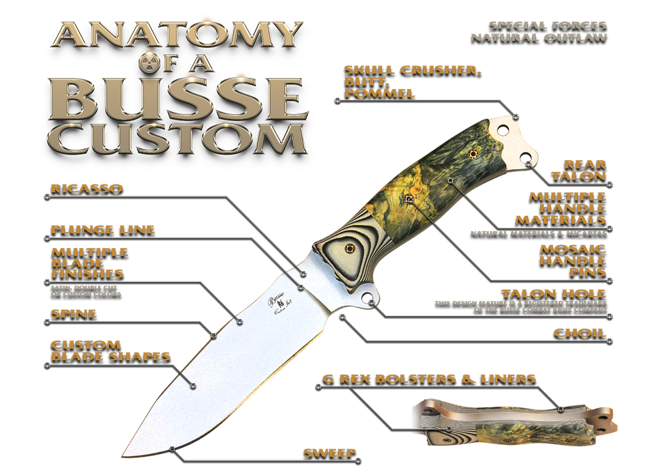 anatomy-of-a-bussecustomshop.png