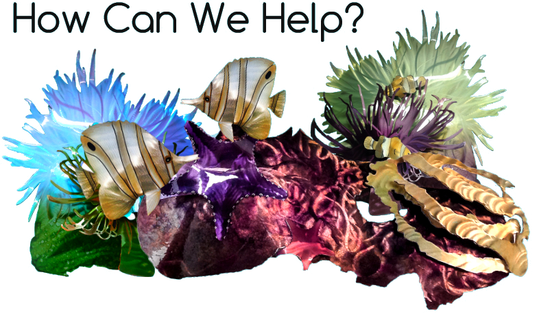 help-you-coral.png