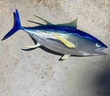 """24"""" Yellowfin Tuna"""
