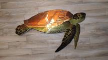 """36"""" Sea Turtle"""