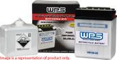 WPS Conventional 12V Heavy Duty Battery With Acid Pack YB30L-B CB30L-B