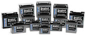 WPS No Hazzard Sealed Battery YTX14-BS 12V14-B