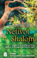 Netivot Shalom, Insights on Holidays and Avoda