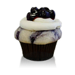 Fresh cake with blueberries baked inside topped with cream cheese frosting and blueberry garnish