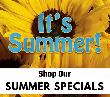 shop-our-summer-specials.png