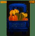 Fall Pumpkin PIck-up  Truck