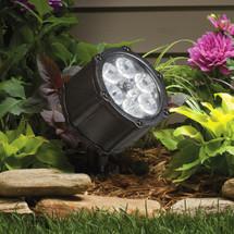 12 Volt LED 60 degree Accent Light - BKT