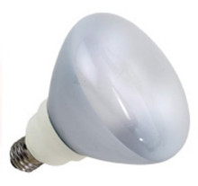 Prolume 23W 2700K E26 Dimmable R40