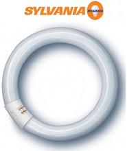 Sylvania Lighting 20W Fluorescent T9 Circline 6in Diameter Lamp