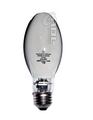 100W ED17 Outdoor Bulb