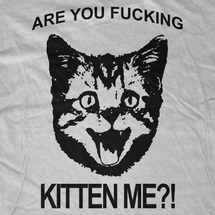 Are You Fucking Kitten Me?!