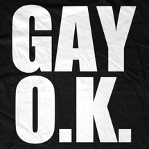 Gay OK T-Shirt