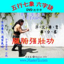 五行七象 六字訣 (臟腑強壯功)DVD