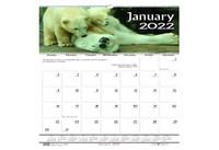 House of Doolittle (HOD3731) Earthscapes Wildlife Wall Calendar 12 x 12