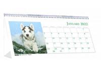 House of Doolittle (HOD3659) Puppies Desk Top Tent Calendar, 8-1/2 x 4-1/4
