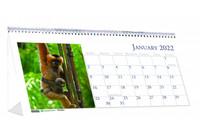 House of Doolittle (HOD3689) Wildlife Desk Top Tent Calendar 8 1/2 x 4 1/2