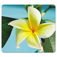 Fellowes Recycled Mouse Pad, Nonskid Base, 7 1/2 x 9, Yellow Flowers