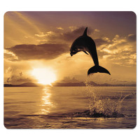Fellowes Recycled Mouse Pad, Nonskid Base, 7 1/2 x 9, Dolphin