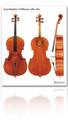 Jean-Baptiste Vuillaume cello 1865