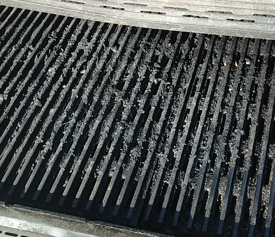 Cleaning Gas Grill Cooking Grates