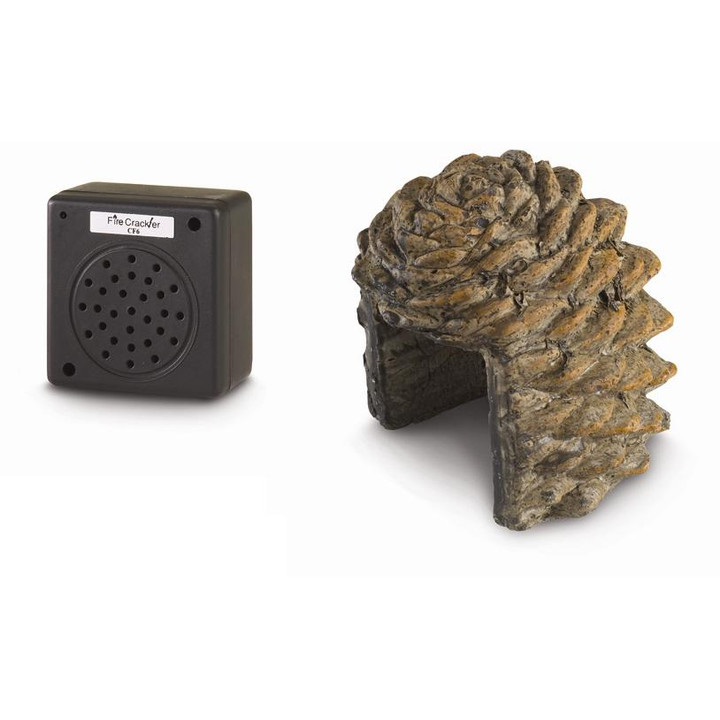 Real Fire Pine Cone Crackler