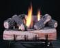 Rasmussen chillbuster c1 burner