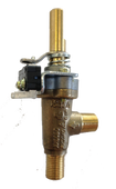 Main Burner Valve w Micro Switch