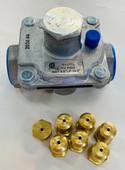 Delta Heat NG Conversion Kit for DHBQ, LP to NG CKNG-DHBQ