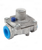 DSC Natural Gas Regulator - 210765P