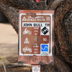 john-bull-12.jpg
