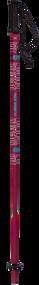 Armada Triad Women's Ski Poles 2019