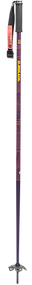 Armada Legion Women's Ski Poles 2020