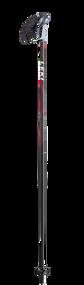 Leki Quantum Ski Poles 2020