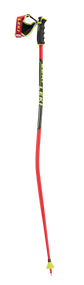 Leki Worldcup Racing GS Ski Poles 2020
