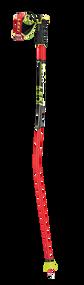 Leki Worldcup Racing GS Ski Poles 2020