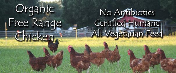 Shop Organic Free Range Chicken