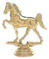 Horses - Tenn Walking