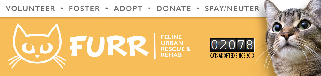 FURR Rescue Event on 9/14/19