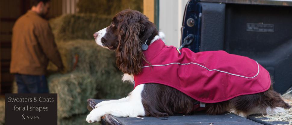 outdoor-gear-pets-people-pgbnnr.jpg