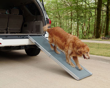 Peachy Solvit Deluxe Telescoping Pet Ramp Ibusinesslaw Wood Chair Design Ideas Ibusinesslaworg