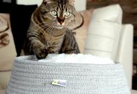 Comfort Retreat Cat Bed