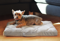 Powernap Pet Bed