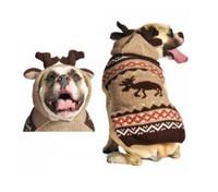 Moosey Dog Hoodie