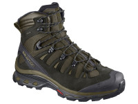 Salomon Men's Quest 4D 3 GTX Hiking Shoe