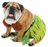 Zelda Hula Dog Costume