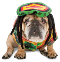 Zelda 70s Rasta Dog Costume