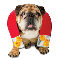 Zelda Chick Magnet Dog Costum