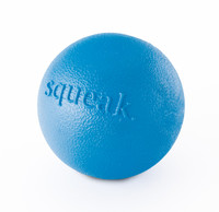 Planet Dog Orbee Squeak Ball