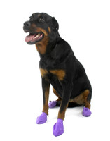 Protex Pawz Disposable Reusable Rubber Dog Boots