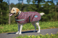 Weatherbeeta 1200D Criss Cross Dog Coat - Orange